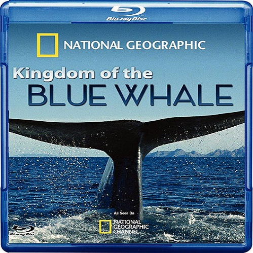 Kingdom of the Blue Whale 2009