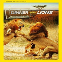 Dinner With Lions 2016
